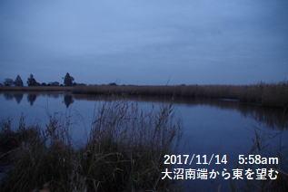 大沼南端から東を望む