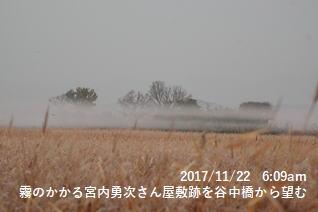 霧のかかる宮内勇次さん屋敷跡を谷中橋から望む
