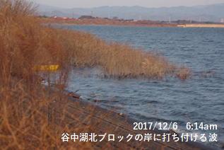谷中湖北ブロックの岸に打ち付ける波