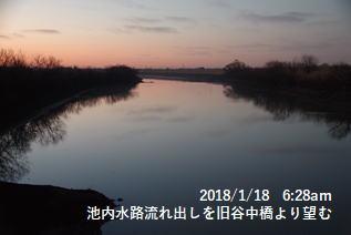 池内水路流れ出しを旧谷中橋より望む
