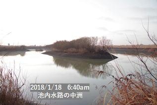 池内水路の中洲