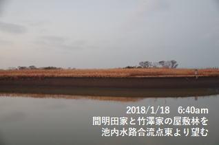 間明田家と竹澤家の屋敷林を池内水路合流点東より望む