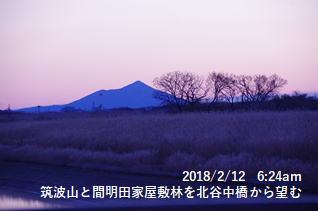 筑波山と間明田家屋敷林を北谷中橋から望む