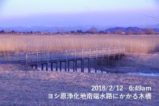 ヨシ原浄化地南端水路にかかる木橋