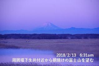 周囲堤下生井付近から朝焼けの富士山を望む