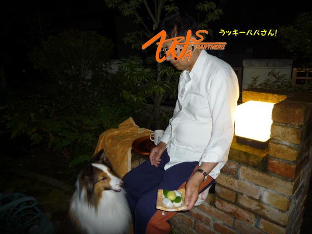 otsukimi01.jpg