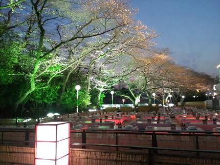 豊島園のさくら