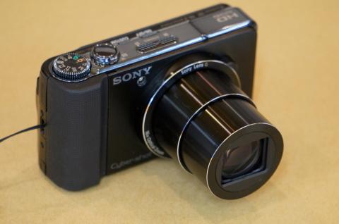 カメ1.JPG