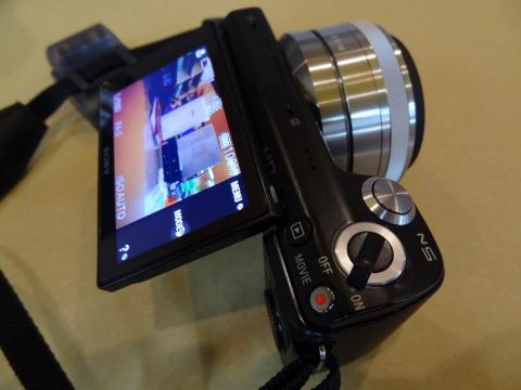 カメ2.JPG