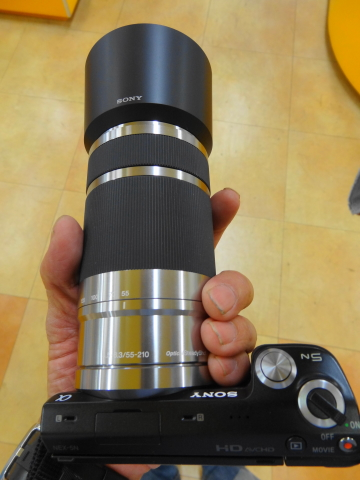 カメ4.JPG