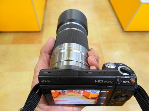 カメ5.JPG