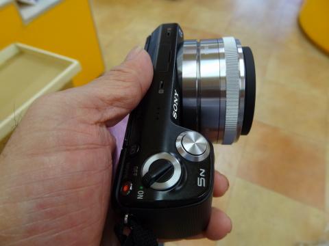 カメ11.JPG