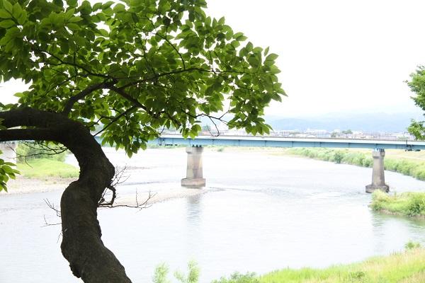 隈岬2.JPG