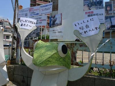 どっぷり昭和町カエル