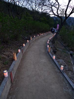小道と灯り