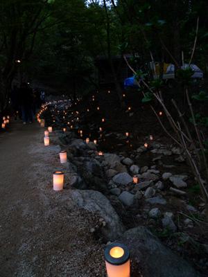 小川と灯り