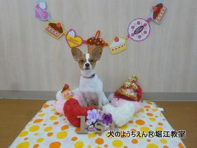 201988堀江 (13).JPG