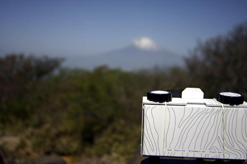 富士山とzebra