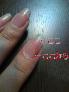 20100319222112.jpg