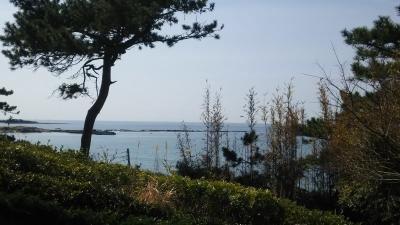 美術館前のきれーな海.JPG