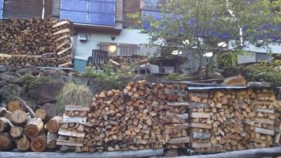 途中の夏沢鉱泉の前の薪.JPG