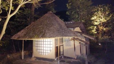 京都桜5.jpg