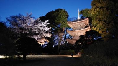 椿山荘庭園1.jpg