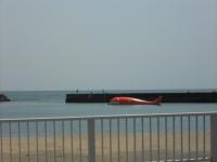 クジラの船