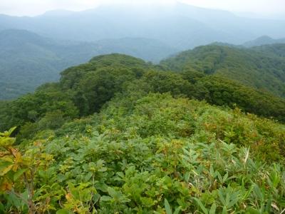 小岳他山7