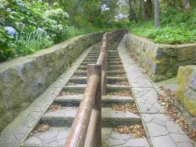 階段国道2