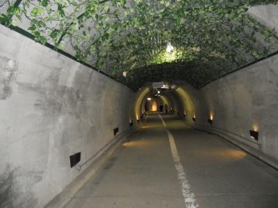 袋田滝トンネル