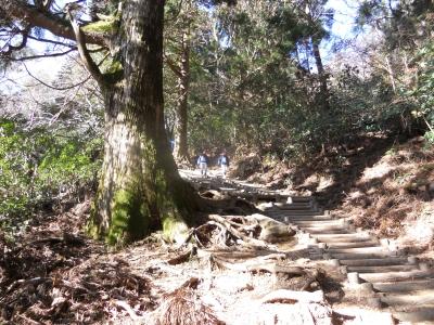 こんな階段ばかり