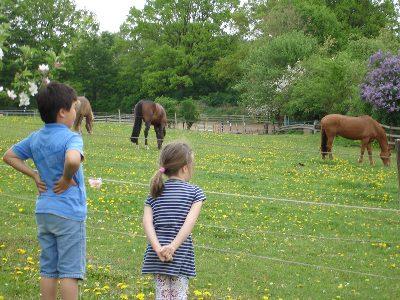 馬とともに育つ子どもたち?