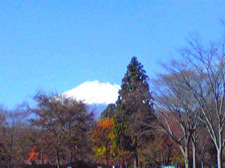 富士山 Image_Ed.JPG