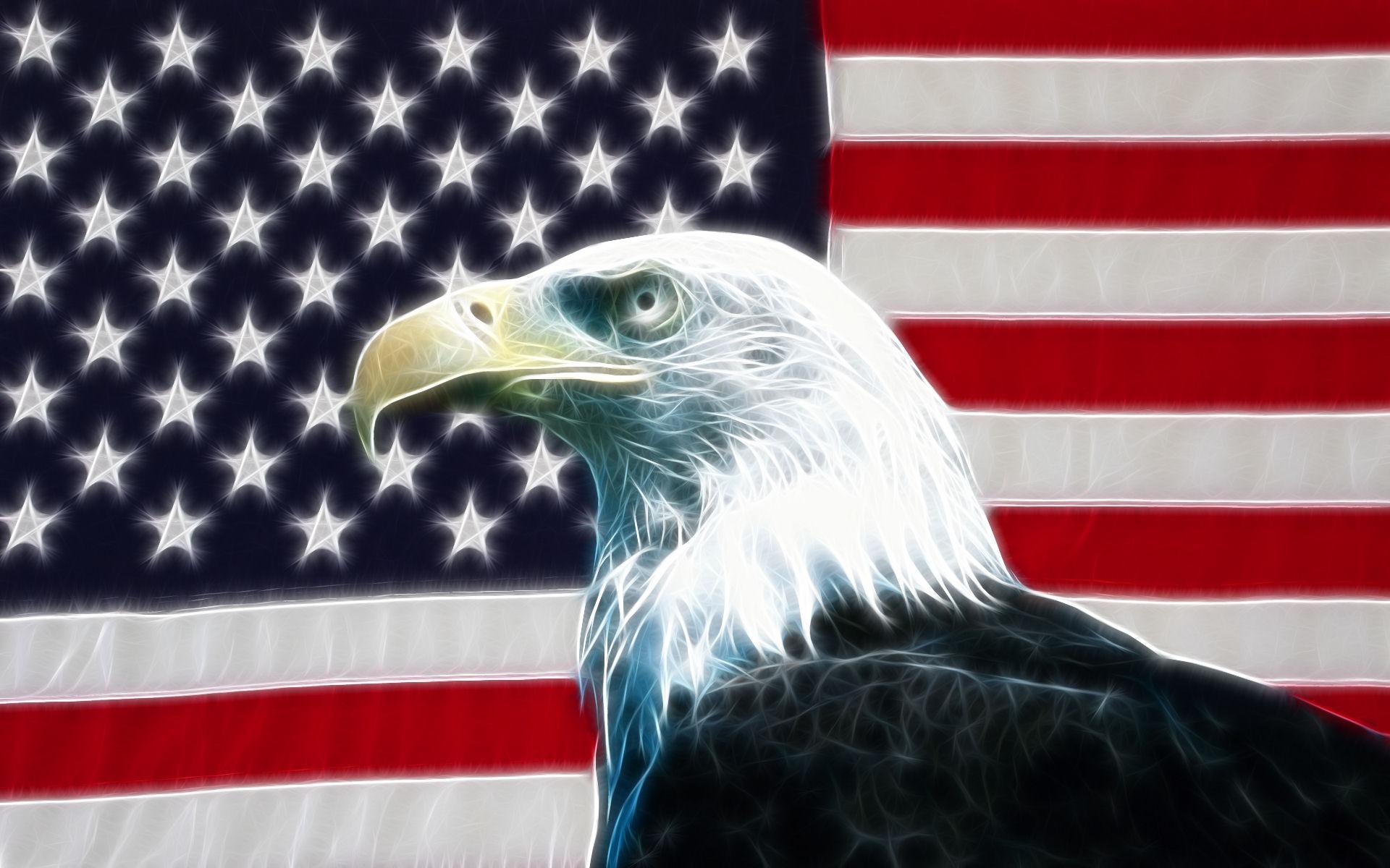 デジタル-アメリカ国旗アメリカンイーグル-220x176.jpg