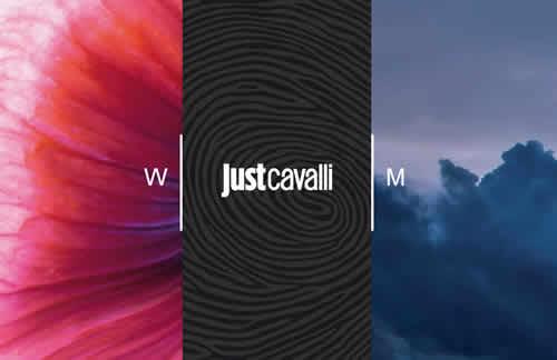 just_cavalli.jpg