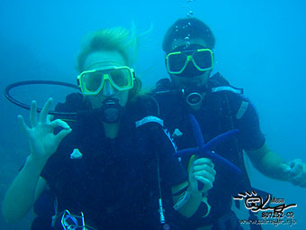 diving at great barrier reef!
