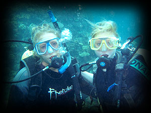PADI open water diver course !