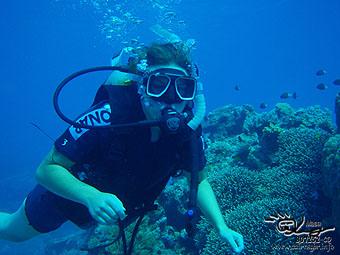 Team Open Water Divers