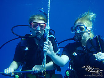 Diving at The Great Barrier Reef!