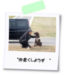 yuzuとよっちゃん