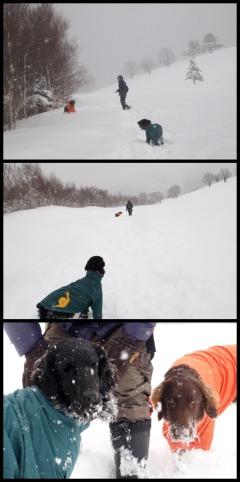 28雪遊びコラージュ.jpg