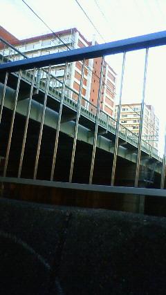 200902011606000.jpg