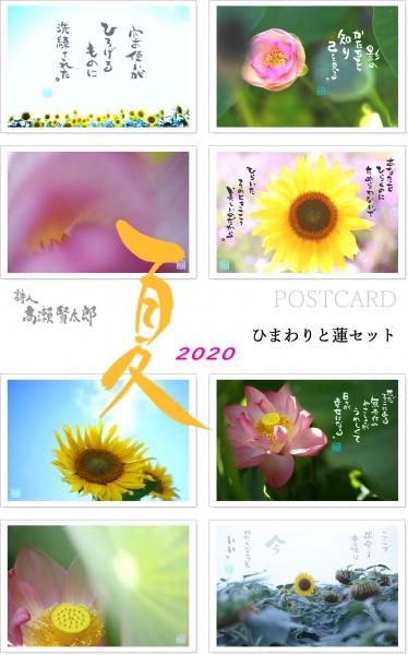 2020夏ひまわりと蓮セット.jpg