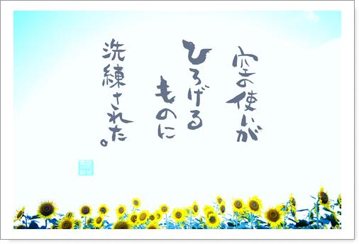 向日葵空の使い.jpg
