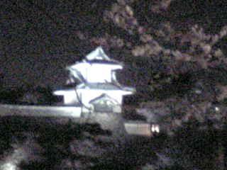 石川門と夜桜