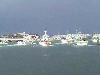 金沢港からの出漁の様子