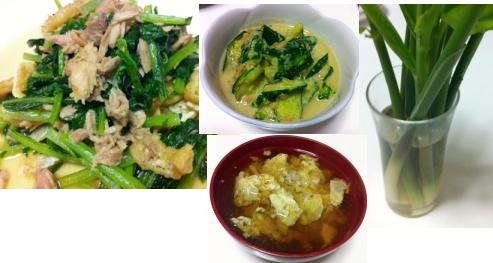 壬生菜、ミョウガタケ
