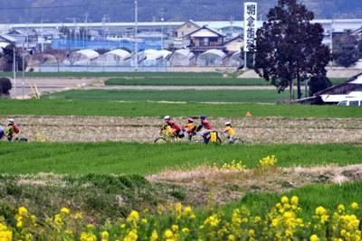 第7回タンデム自転車まつりinしまなみ海道の様子