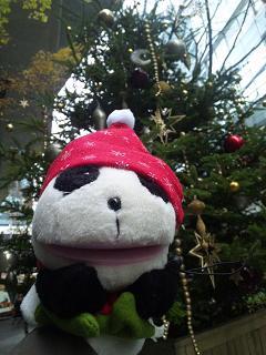 もうすぐクリスマスだね〜♪